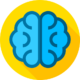 049-brain